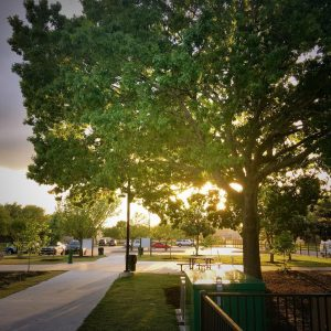 Sunset at our neighborhood park on a soon to vanishhellip
